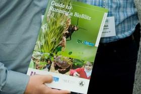 Guide launch crop