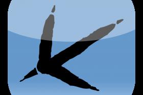 BirdTrackIconMasterLarge