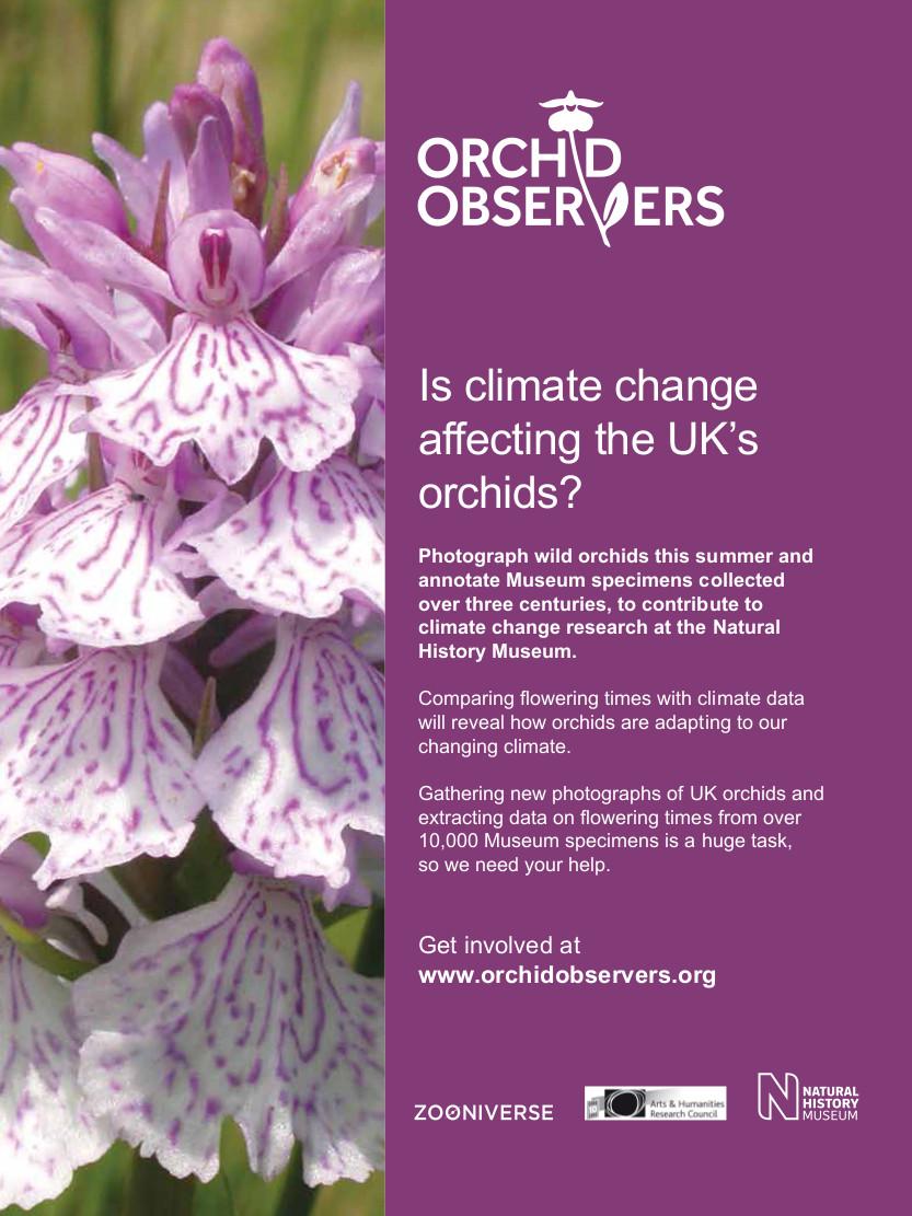 OrchidObservers_Eflyer