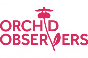 OrchidObservers_Pink2