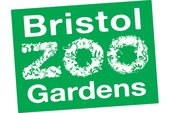 Image result for bristol zoo