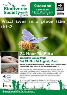 13th-14th August Cuerden Valley Park BioBlitz