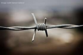 barbed-wire_gabriel-calderon